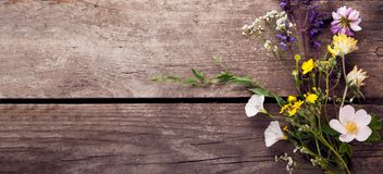 Wild flowers on old grunge wooden background chamomile lupine dandelions thyme mint bells.  royalty free stock photography
