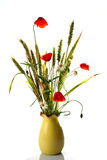 Wild flowers poppy bouquet Stock Images