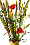 Wild flowers poppy bouquet Stock Photo