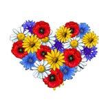 Wild flowers - poppy, chamomile, cornflower, daisy, heart shaped decoration element Stock Photo