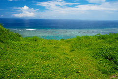 Wild flowers and Sea Horizon, Okinawa Prefecture/Japan Stock Image