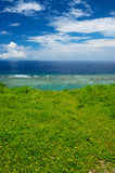 Wild flowers and Sea Horizon, Okinawa Prefecture/Japan Royalty Free Stock Photography