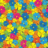 Wild flowers of seamless pattern Royalty Free Stock Images