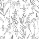 Wild flowers seamless pattern vector illustration
