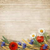 Wild flowers with spikelets on a wooden background. Border of wildflowers, spikelets, chamomiles, cornflowers and poppies on a wooden background with space for Royalty Free Stock Photography