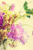Wild flowers spring bouquet Royalty Free Stock Photos