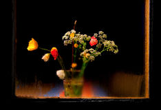 Wild flowers in vase Stock Images