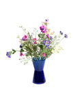 Wild flowers in vase. Composition of wild flowers in vase isolated Stock Photo