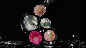 Wild flowers in the water game. Wild flowers enclosed by water falling into water 3d illustration royalty free illustration