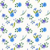 Wild Flowers Watercolor Compositions. Seamless Pattern. Stock Photo