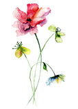 Wild flowers watercolor illustration Stock Photos