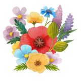 Flowers poppies watercolor pattern set illustration seamless stock photography