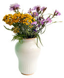 Wild flowers in a white vase Stock Image