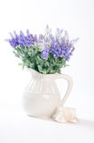Wild flowers in a white vase on a white background. Royalty Free Stock Photography