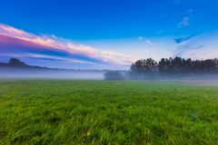 Wild foggy meadow landscape Royalty Free Stock Image