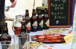 Really Wild Food Festival Royalty Free Stock Images