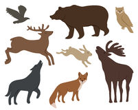 Wild forest animals Stock Photo