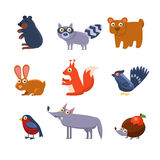 Wild Forest Animals. Vector Illustration Royalty Free Stock Image