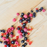 Wild forest berries Royalty Free Stock Photography