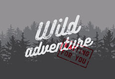 Wild Forest and Ecotourism concept typographical vintage grunge style poster with fir trees landscape. Retro vector illustration. Royalty Free Stock Images