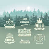 Wild Forest and Ecotourism typographic retro labels, vintage badges and logo signs on the background with fir trees landscape. Gru Royalty Free Stock Image