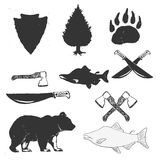 Wild forest hand drawn labels set Stock Images