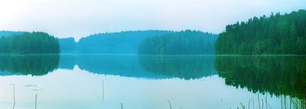 Wild forest lake in the morning Royalty Free Stock Photo
