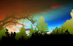 Wild forest landscape with sky, silhouettes of trees, branches and plants Stock Image