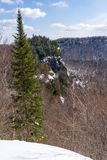 Wild forest in Laurentides mountains at Val David stock images