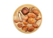 Wild forest mushroom on wooden board Stock Photos