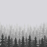 Wild forests natural background Royalty Free Stock Photos