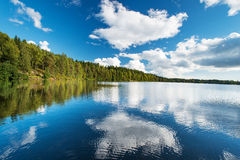Wild forrest and lake Stock Photo