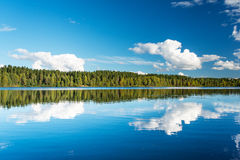 Wild forrest and lake. Norwegian landscape: Wild forrest and lake Royalty Free Stock Photography