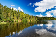 Wild forrest lake sky Royalty Free Stock Photography