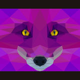 Wild fox stares forward. Abstract geometric polygonal illustration Royalty Free Stock Photography