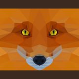 Wild fox stares forward. Nature and animals life theme. Abstract geometric polygonal triangle illustration. For use in design for card, invitation, poster Royalty Free Stock Photos