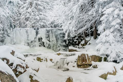 Wild frozen waterfall Stock Images