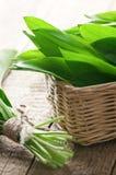 Wild_garlic Royalty Free Stock Photography