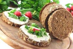 Wild garlic Bread. With Cream cheese, wild garlic and radishes Royalty Free Stock Photography