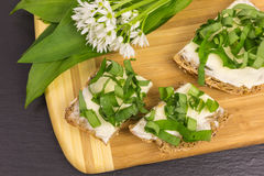 Wild garlic with bread and butter Stock Images