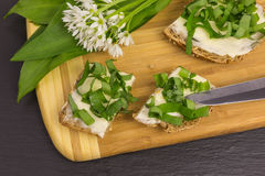 Wild garlic with bread and butter Royalty Free Stock Photography