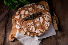 Wild garlic bread. A fresh and tasty wild garlic bread Royalty Free Stock Photos