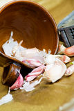 Wild garlic ingredients Royalty Free Stock Photos