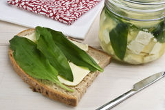 Wild garlic leaves (bear's garlic). Wild garlic served on a  buttered bread and some more pickled with cheese. Wild garlic is also known as ramsons, buckrams Royalty Free Stock Images