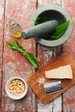 Wild garlic pesto Stock Photography