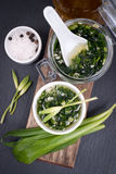 Wild garlic pesto Royalty Free Stock Photos