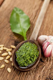Wild garlic. Pesto of wild garlic, garlic, pine nuts, olive oil and Parmesan Royalty Free Stock Photography
