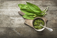 Wild garlic. Pesto on wood table closeup Royalty Free Stock Image