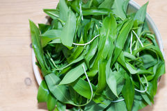 Wild garlic, ramsons on wooden table Royalty Free Stock Photography