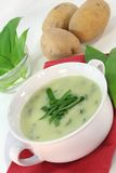 Wild garlic soup Royalty Free Stock Photo